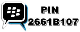 pin bb ace maxs